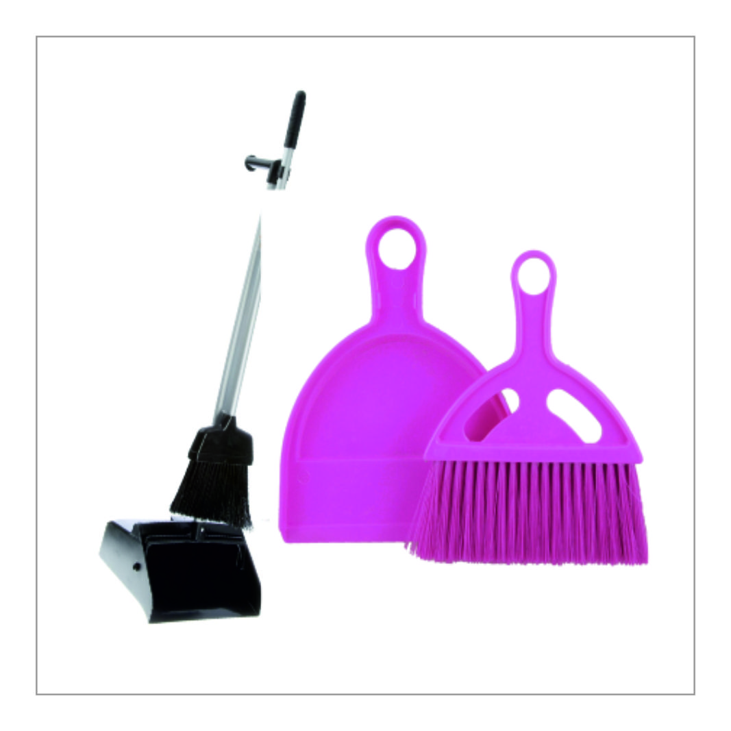 Broom with Dustpan